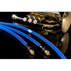 Albedo Blue (2xRCA - 2xRCA)... | amplituner, amplituner moon, amplituner z cd magnat, amplitunery moon, climate garden monitor audio, glosnik, glosnik bezprzewodowy, glosnik jbl, glosniki bluetooth, głośnik bezprzewodowy, głośnik bluetooth, głośnik jbl, głośniki, głośniki aktywne taga, głośniki atmos, głośniki do komputera, głośniki instalacyjne monitor audio, głośniki instalacyjne monitor audio all weather, głośniki instalacyjne monitor audio controlled performance, głośniki instalacyjne monitor audio core, głośniki instalacyjne monitor audio flush fit, głośniki instalacyjne monitor audio invisible, głośniki instalacyjne monitor audio platinum, głośniki instalacyjne monitor audio pro, głośniki instalacyjne monitor audio seria all weather, głośniki instalacyjne monitor audio seria controlled performance, głośniki instalacyjne monitor audio seria core, głośniki instalacyjne monitor audio seria flush fit, głośniki instalacyjne monitor audio seria invisible, głośniki instalacyjne monitor audio seria platinum, głośniki instalacyjne monitor audio seria pro, głośniki instalacyjne monitor audio seria slim, głośniki instalacyjne monitor audio seria soundframe, głośniki instalacyjne monitor audio seria super slim, głośniki instalacyjne monitor audio slim, głośniki instalacyjne monitor audio soundframe, głośniki instalacyjne monitor audio super slim, głośniki komputerowe, głośniki ogrodowe, głośniki ogrodowe monitor audio, głośniki zewnętrzne, głośniki zewnętrzne monitor audio climate garden, gold note cd-1000, gold note ph-1, gold note ph-10, gramofon giglio, gramofon gold note, gramofon gold note giglio, gramofon gold note mediterraneo, gramofon gold note pianosa, gramofon gold note valore 425, gramofon magnat, gramofon mediterraneo, gramofon pianosa, gramofon valore 425, heco aleva gt, heco ambient, heco aurora, heco direkt, heco elementa, heco la diva, heco seria aleva gt, heco seria ambient, heco seria aurora, heco seria direkt, heco seria elementa, heco seria la diva, h