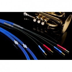 Albedo Blue 2x 2,5 m | amplituner, amplituner moon, amplituner z cd magnat, amplitunery moon, climate garden monitor audio, glosnik, glosnik bezprzewodowy, glosnik jbl, glosniki bluetooth, głośnik bezprzewodowy, głośnik bluetooth, głośnik jbl, głośniki, głośniki aktywne taga, głośniki atmos, głośniki do komputera, głośniki instalacyjne monitor audio, głośniki instalacyjne monitor audio all weather, głośniki instalacyjne monitor audio controlled performance, głośniki instalacyjne monitor audio core, głośniki instalacyjne monitor audio flush fit, głośniki instalacyjne monitor audio invisible, głośniki instalacyjne monitor audio platinum, głośniki instalacyjne monitor audio pro, głośniki instalacyjne monitor audio seria all weather, głośniki instalacyjne monitor audio seria controlled performance, głośniki instalacyjne monitor audio seria core, głośniki instalacyjne monitor audio seria flush fit, głośniki instalacyjne monitor audio seria invisible, głośniki instalacyjne monitor audio seria platinum, głośniki instalacyjne monitor audio seria pro, głośniki instalacyjne monitor audio seria slim, głośniki instalacyjne monitor audio seria soundframe, głośniki instalacyjne monitor audio seria super slim, głośniki instalacyjne monitor audio slim, głośniki instalacyjne monitor audio soundframe, głośniki instalacyjne monitor audio super slim, głośniki komputerowe, głośniki ogrodowe, głośniki ogrodowe monitor audio, głośniki zewnętrzne, głośniki zewnętrzne monitor audio climate garden, gold note cd-1000, gold note ph-1, gold note ph-10, gramofon giglio, gramofon gold note, gramofon gold note giglio, gramofon gold note mediterraneo, gramofon gold note pianosa, gramofon gold note valore 425, gramofon magnat, gramofon mediterraneo, gramofon pianosa, gramofon valore 425, heco aleva gt, heco ambient, heco aurora, heco direkt, heco elementa, heco la diva, heco seria aleva gt, heco seria ambient, heco seria aurora, heco seria direkt, heco seria elementa, heco seria la diva, heco seria 